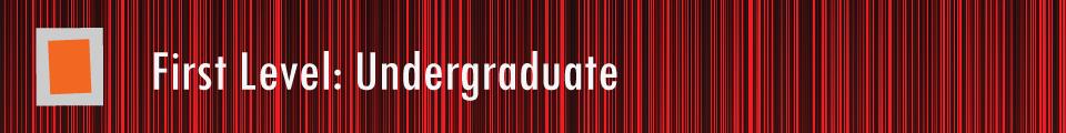 First-Level-Undergraduate-Axiom
