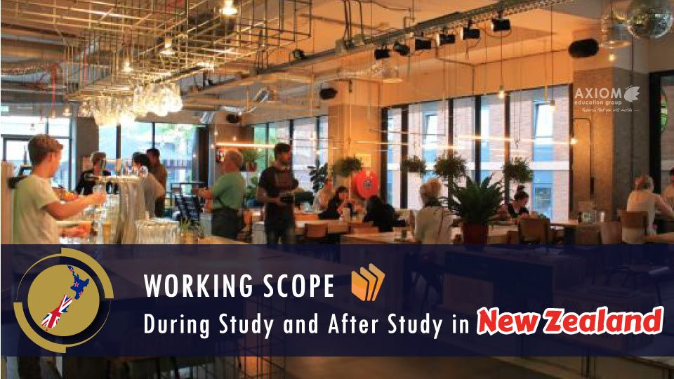 WORKING-SCOPE-DURING-STUDY-AFTER-STUDY-NEW-ZEALAND-960x540